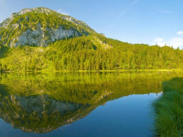 inzell sommer panorama frillensee