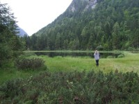inzell sommer krottensee natur 01