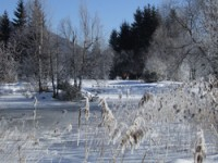89768_inzell_winter_landschaft_06