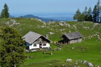 69181_inzell_sommer_panorama_alm_02
